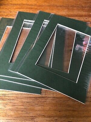 "Green Picture Photo Frame Mounts Bevel Cut Mount pack 5 5x7"" For Pic 3.5x4.75"""