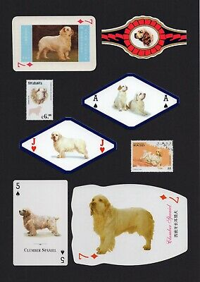 Clumber Spaniel Mounted Collection Of Vintage Dog Playing Cards Stamps And Bands
