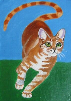 "A607      Original Acrylic Aceo Painting By Ljh       ""Lance""   Cat Kitten"