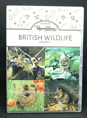 Pollyanna Pickering British Wildlife Vol 111 CD-ROM Animal Papers Toppers Tags