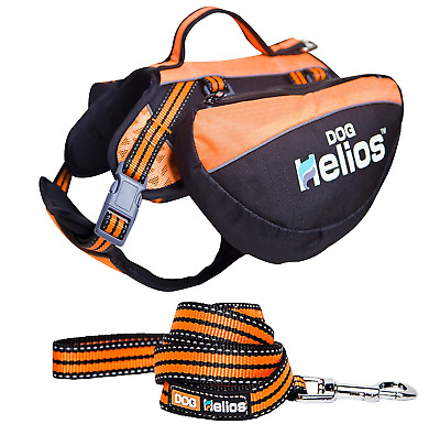 DogHelios Freestyle 3-in-1 Explorer Convertible Backpack, Harness and Leash,