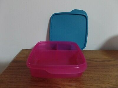 Tupperware Divided Lunch-It Dish Lunch Container ~ Fuchsia Kiss/Peacock ~ NEW