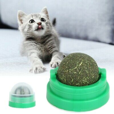 Healthy Cat Toy Natural Catnip Ball Cleaning Teeth Eating Cat-go-crazy Treats