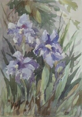SYDNEY VALE FRSA - PURPLE IRISES - 20th C VINTAGE WATERCOLOUR