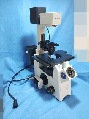 OLYMPUS IX51  Inverted Fluorescence and Phase Contrast Microsocpe