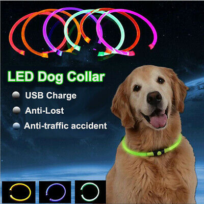 USB Rechargeable LED Dog Pet Collar Flashing Waterproof Adjustable Safety Light