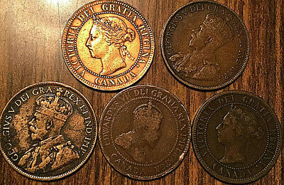 1888 1901 1906 1913 1916 Canada Large Cents 1 Cent Penny Lot Of 5 Coins