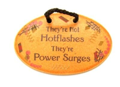 Mountaine Meadows Pottery They're not HOT FLASHES they're POWER SURGES Plaque