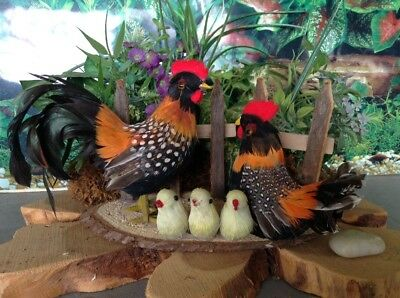 """Realistic Spotted Chickens Rooster Hen Chicks Real Feathers Figurine 4.5""""H x 8""""L"""