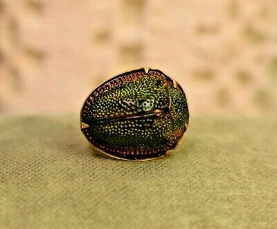 Estate antique 14k Gold Edwardian scarab beetle brooch