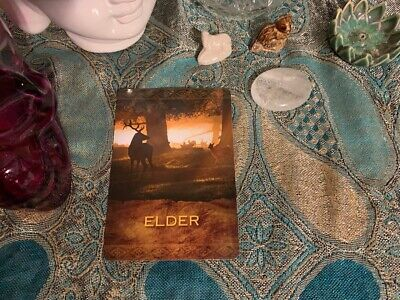 Oracle Card Reading, 1 Card, 1 Question. Native American Medium/Psychic