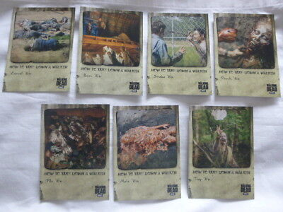 Walking Dead Hunters &The Hunted How To Take Down a Walker Card Set HT-1 to HT-7