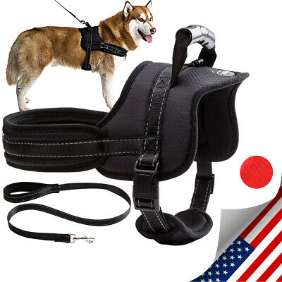 No Pull Dog Harness Adjustable Dog Vest Harness Padded with Leash with Handle