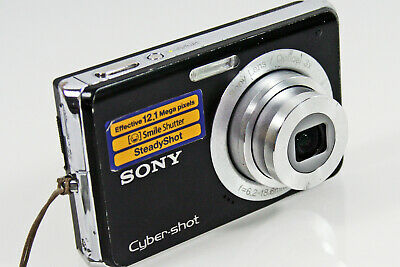 Sony Cybershot Dsc W-190 12.1 Mp Digital Camera & Charger & Case Supports Rspca