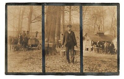 RPPC tri-photo postcard TAPPING TREES, BOILING SAP New England MAPLE SYRUP 1910s