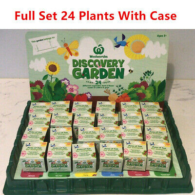 Woolworths Discovery Little Garden Full Set 24 Plants with case Express Shipping