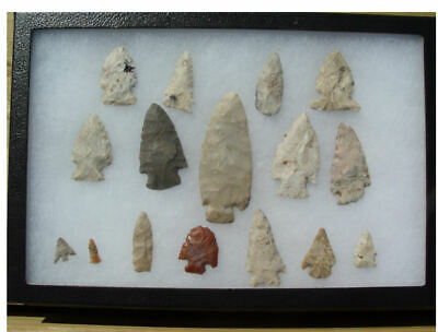 16 Native American Indian Arrowheads Hardin Bird Points Livingston County Il
