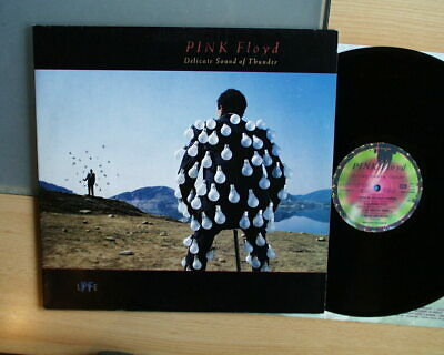 Pink Floyd  Delicate Sound of Thunder Live 2 LPs  Near Mint