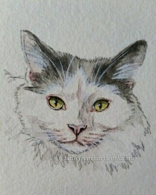 Original Watercolor Painting ACEO Fluffy Simese silver Cat Pet Art Halie French