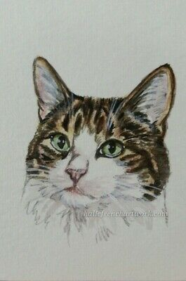 Watercolor Painting Original Cat aceo Gold Tabby Kitty Pet Art Halie French