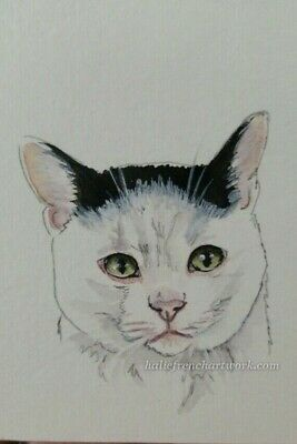 Watercolor Painting Original Cat aceo Black & White Kitty Pet Art Halie French