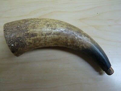 Antique 18th 19th Century Revolutionary to Civil War Period Powder Horn w/Plug