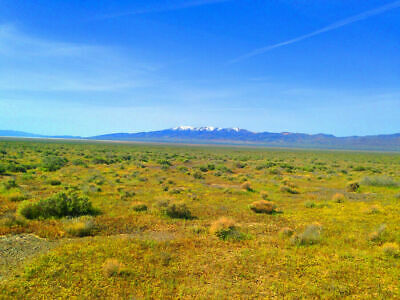 40 Acre Eureka County Nevada Ranch! Direct Road Access! Cash Sale! No Reserve!