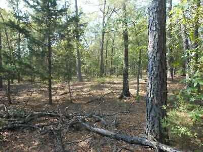 Oklahoma Land  BUY DON'T LEASE  AGAIN - 20 Acres / PRIME HUNTING with a CREEK!