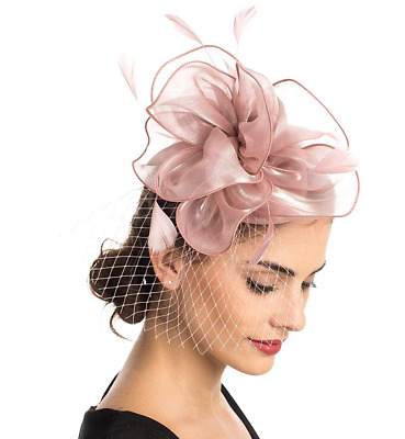 Fascinator Hat Feather Mesh Net Veil Party Hat Flower Derby Hat with Clip and