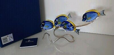 Swarovski Crystal Paradise Large Surgeon Fish Scuba Blue Brand New Mint In Box
