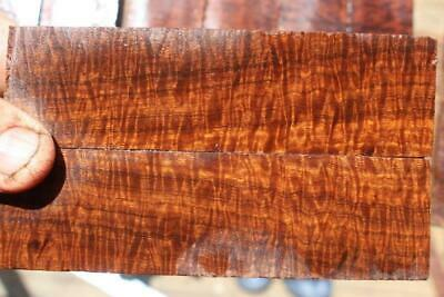 Ringed Gidgee Bookmatched Scales  186
