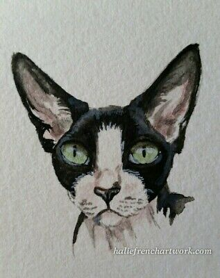 ORIGINAL WATERCOLOR PAINTING ACEO SPHYNX CAT PET BLACK & WHITE ART Halie French
