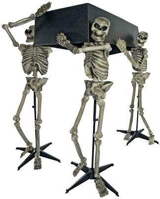 Life Size SKELETONS CARRYING COFFIN Halloween Prop Yard HAUNTED Decor Outdoor