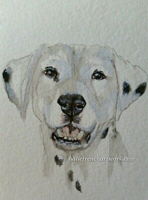 ORIGINAL WATERCOLOR PAINTING ACEO Dog DALMATION ARTIST PET PORTRAIT Halie French