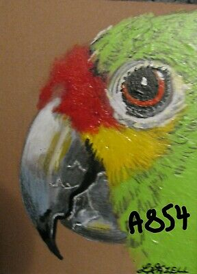 """A854      Original Acrylic Aceo Painting By Ljh  """"Parrot"""""""