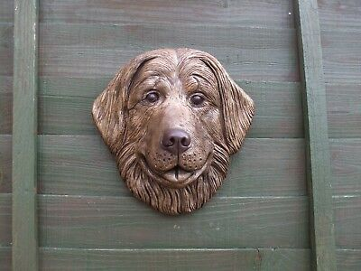 Large Bernese Mountain Dog Dogs Bronzed Stone Head  Wall Sculpture
