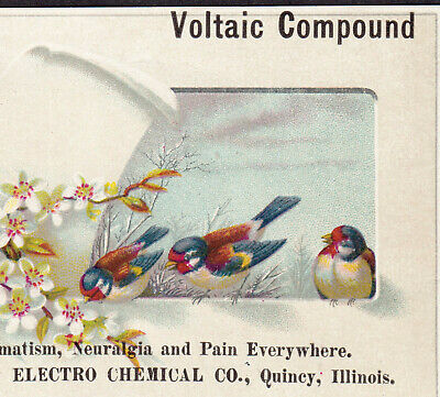 Electro-Chemical Co Quincy IL Voltaic Compound Quack Cure Victorian Trade Card