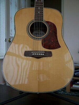 Aria Aw 55Q With Fishman Isys T