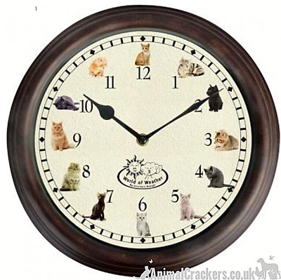 CAT MEOW SOUNDS HOURLY CHIMING WALL CLOCK Cat lover novelty gift, boxed