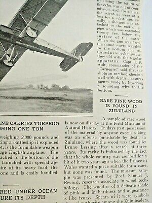 Mar 1929 Magazine Page #A200- Rare Pink Wood Is Found In Zululand- Death Penalty