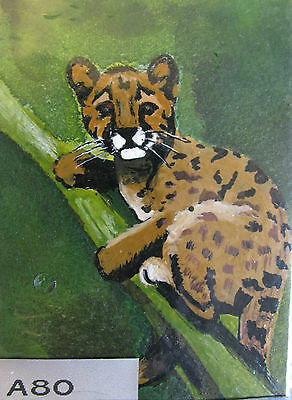 """A80    Original Acrylic Aceo Painting By Ljh  - """"Baby Puma"""""""
