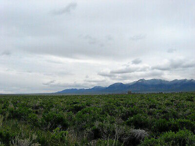 Beautiful 20 Acre Nevada Ranch! Easy Access! Near Paved Road! No Reserve!