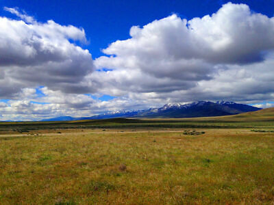 Stunning 40 Acre Nevada Ranch! Mountain Views! Adjoins Blm Land! No Reserve!