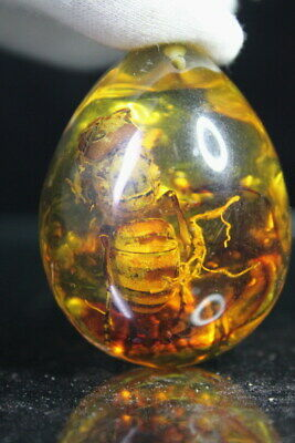 Collection China Handwork Antique Amber Inlay Lifelike Hornets Exquisite Pendant