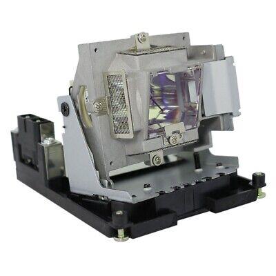 BenQ 5J.J8805.001 Philips Projector Lamp With Housing