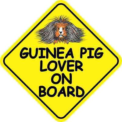 6in x 6in Long Haired Guinea Pig Lover on Board Magnet