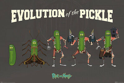Rick and Morty - Evolution Of The Pickle Maxi Poster