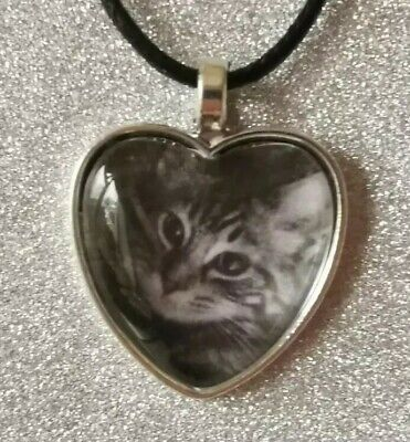 Custom made to order personalised pet necklace cat dog gift idea jewellery kitty