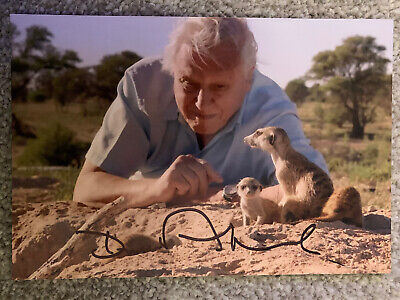 David Attenborough - Signed Autographed Photo