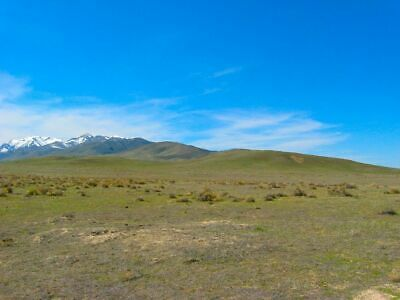 Rare 20 Acre Nevada Ranch! Easy Access! Mountain Views! Cash Sale! No Reserve!